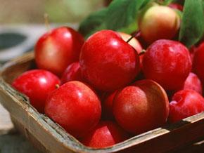 白癜风患者吃苹果会不会加重病情?